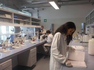 monit-2_gal-2-laboratorio2