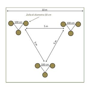 schema di trapianto delle zolle